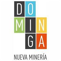Tribunal Ambiental prepara las bases de conciliación para destrabar proyecto Dominga